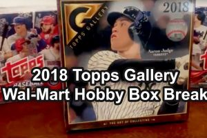 2018 Topps Gallery Hobby Box Break from Walmart